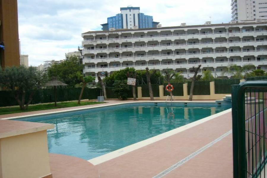 Benidorm,Alicante,España,1 Dormitorio Bedrooms,1 BañoBathrooms,Apartamentos,24231