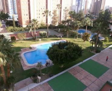 Benidorm,Alicante,España,1 Dormitorio Bedrooms,1 BañoBathrooms,Apartamentos,24243