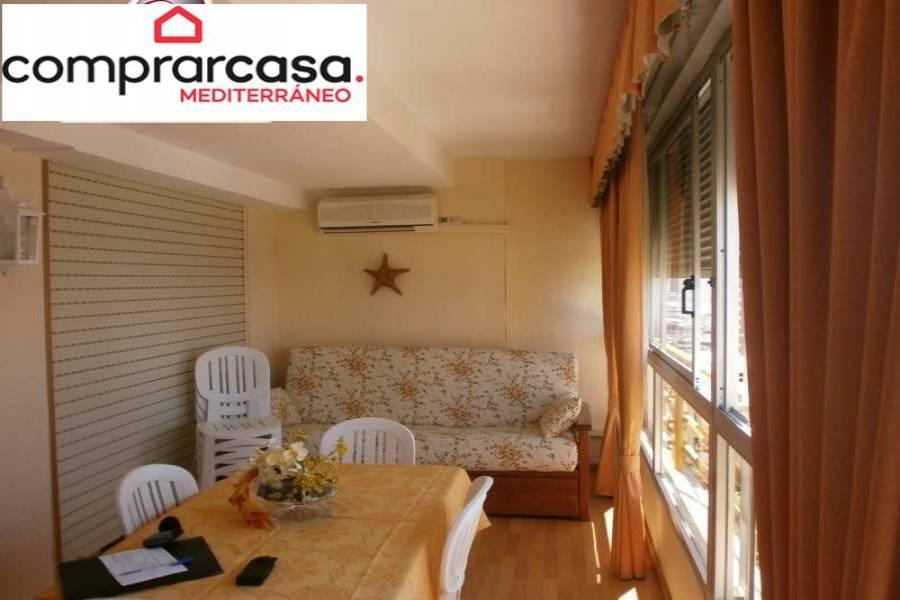 Benidorm,Alicante,España,1 Dormitorio Bedrooms,1 BañoBathrooms,Apartamentos,24252