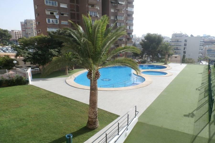 Benidorm,Alicante,España,1 Dormitorio Bedrooms,1 BañoBathrooms,Apartamentos,24269