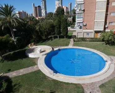 Benidorm,Alicante,España,1 Dormitorio Bedrooms,1 BañoBathrooms,Apartamentos,24278