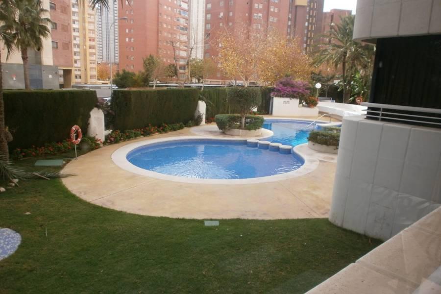 Benidorm,Alicante,España,1 Dormitorio Bedrooms,1 BañoBathrooms,Apartamentos,24288