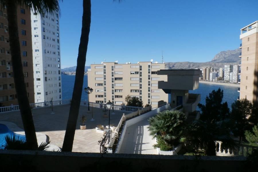 Benidorm,Alicante,España,1 Dormitorio Bedrooms,1 BañoBathrooms,Apartamentos,24299