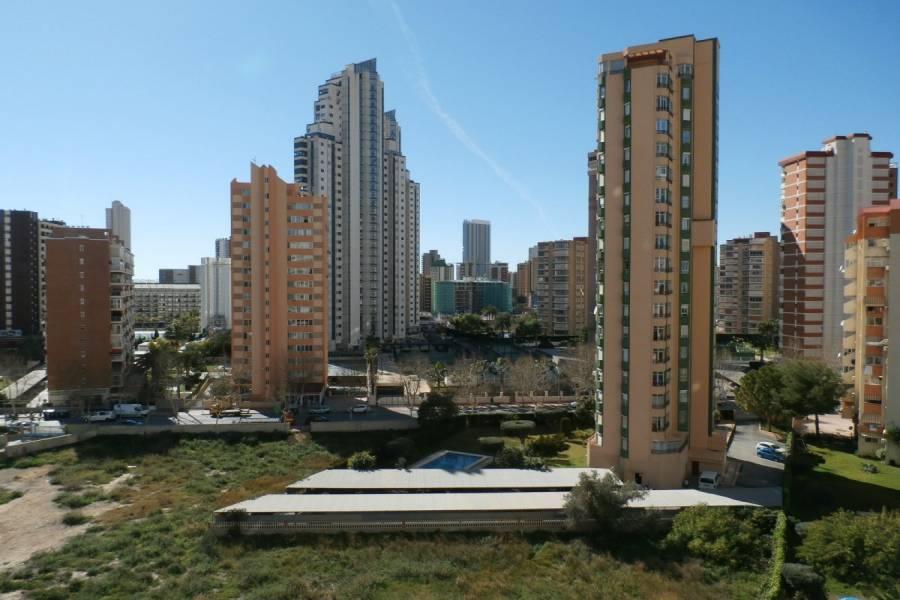 Benidorm,Alicante,España,1 Dormitorio Bedrooms,1 BañoBathrooms,Apartamentos,24315