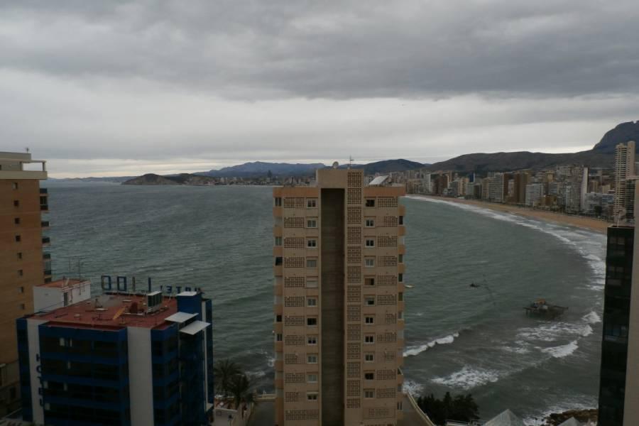 Benidorm,Alicante,España,2 Bedrooms Bedrooms,1 BañoBathrooms,Apartamentos,24320