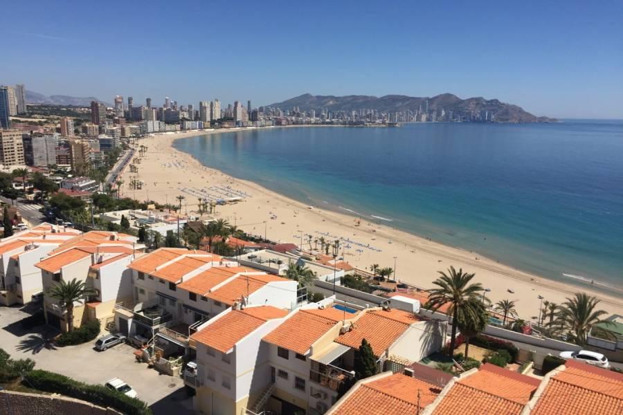Benidorm,Alicante,España,1 Dormitorio Bedrooms,1 BañoBathrooms,Apartamentos,24331