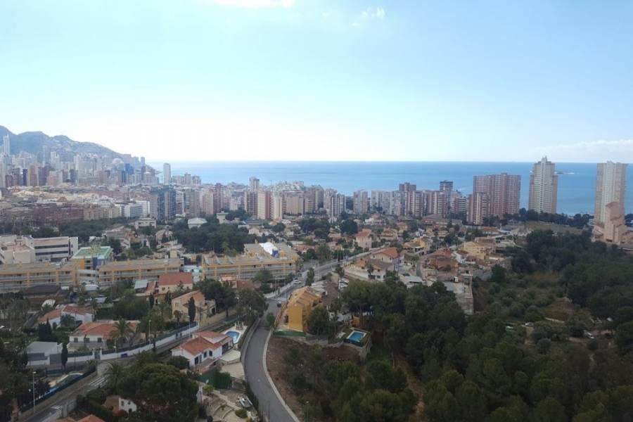 Benidorm,Alicante,España,1 Dormitorio Bedrooms,1 BañoBathrooms,Apartamentos,24346