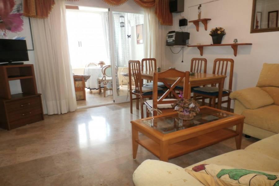 Benidorm,Alicante,España,2 Bedrooms Bedrooms,1 BañoBathrooms,Apartamentos,24352