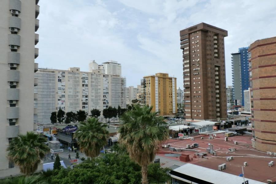 Benidorm,Alicante,España,2 Bedrooms Bedrooms,2 BathroomsBathrooms,Apartamentos,24353