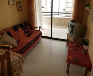 Benidorm,Alicante,España,1 Dormitorio Bedrooms,1 BañoBathrooms,Apartamentos,24356