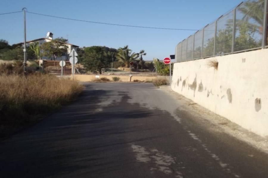 Elche,Alicante,España,Lotes-Terrenos,24375