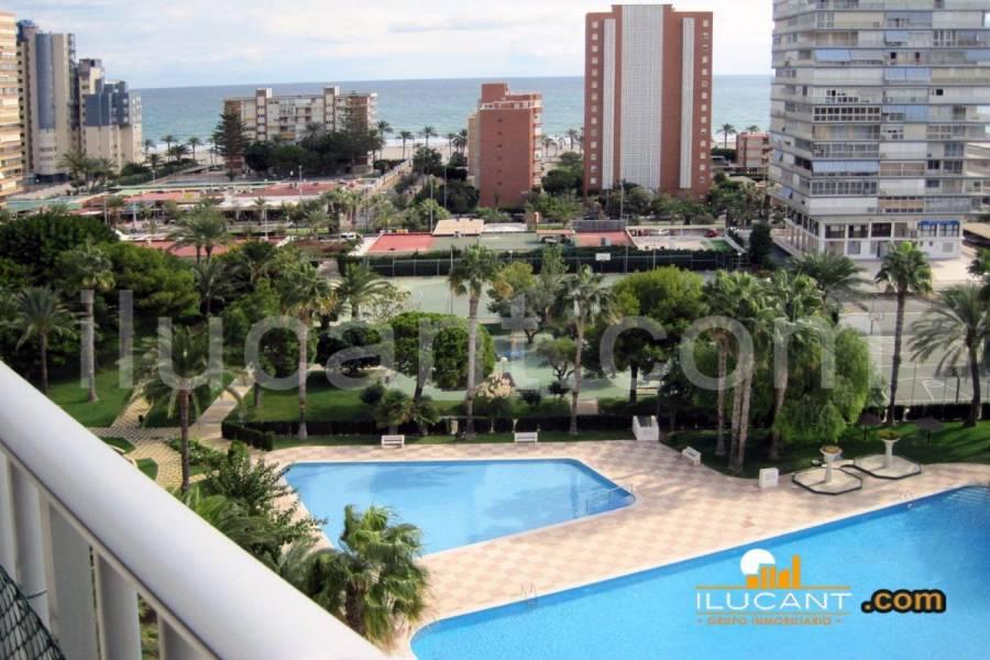 Alicante,Alicante,España,2 Bedrooms Bedrooms,1 BañoBathrooms,Apartamentos,24397
