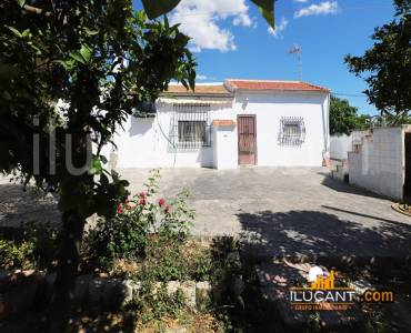 San Vicente del Raspeig,Alicante,España,2 Bedrooms Bedrooms,1 BañoBathrooms,Casas,24401