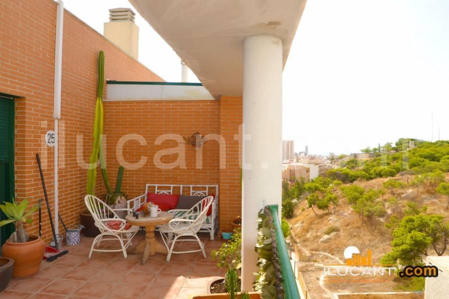 Alicante,Alicante,España,2 Bedrooms Bedrooms,2 BathroomsBathrooms,Atico,24410