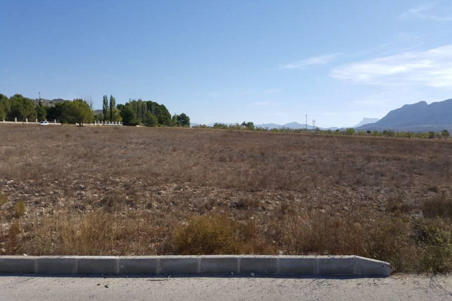 Salinas,Alicante,España,Lotes-Terrenos,24464