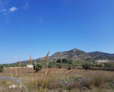 Sax,Alicante,España,Lotes-Terrenos,24494
