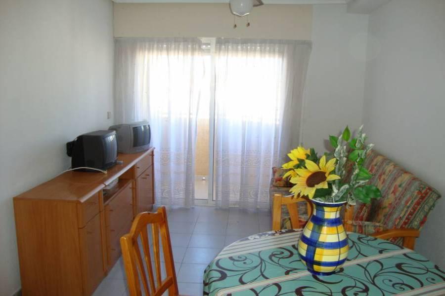 Torrevieja,Alicante,España,1 Dormitorio Bedrooms,1 BañoBathrooms,Apartamentos,24501