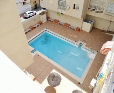 Torrevieja,Alicante,España,1 Dormitorio Bedrooms,1 BañoBathrooms,Apartamentos,24526