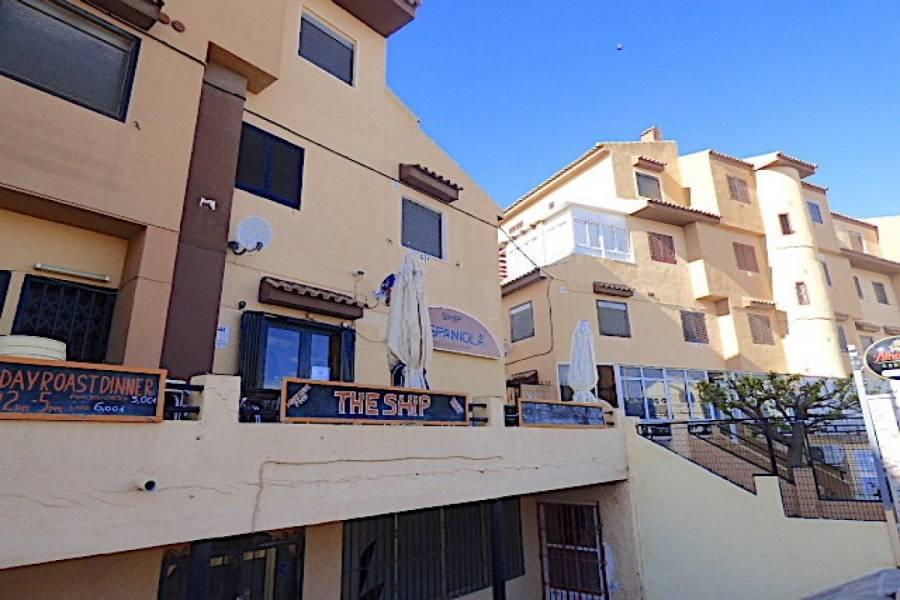 Torrevieja,Alicante,España,1 Dormitorio Bedrooms,1 BañoBathrooms,Apartamentos,24531