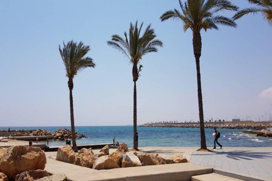Torrevieja,Alicante,España,3 Bedrooms Bedrooms,2 BathroomsBathrooms,Apartamentos,24532