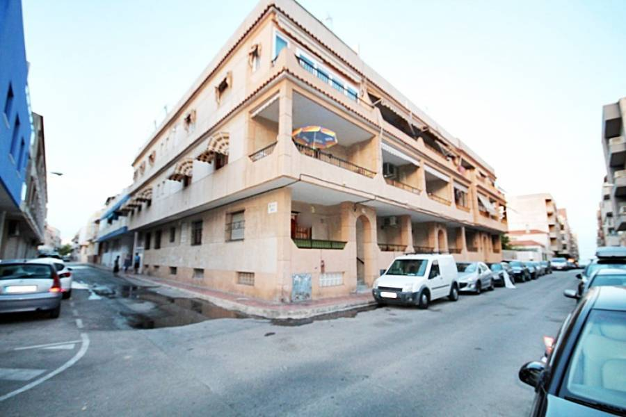 Torrevieja,Alicante,España,2 Bedrooms Bedrooms,1 BañoBathrooms,Planta baja,24554