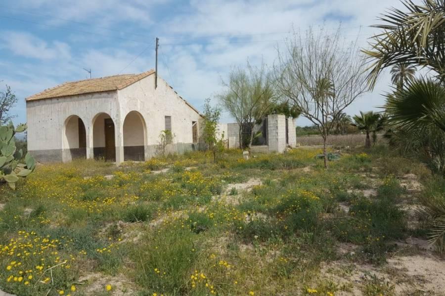 Elche,Alicante,España,Lotes-Terrenos,24598
