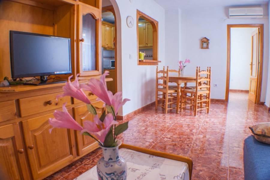 Torrevieja,Alicante,España,1 Dormitorio Bedrooms,1 BañoBathrooms,Apartamentos,24609