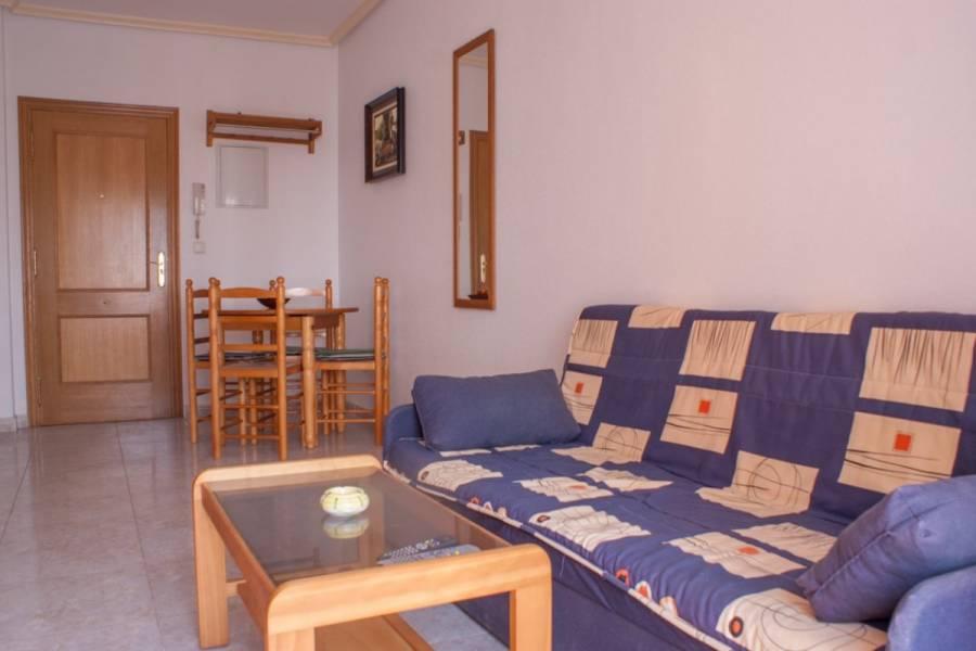 Torrevieja,Alicante,España,1 Dormitorio Bedrooms,1 BañoBathrooms,Apartamentos,24612