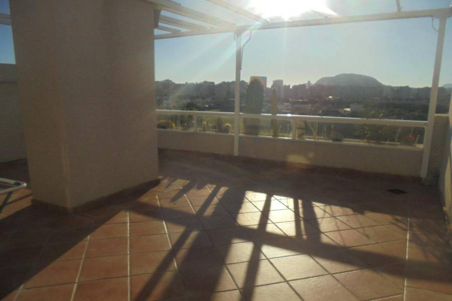 San Juan playa,Alicante,España,2 Bedrooms Bedrooms,2 BathroomsBathrooms,Atico,24666