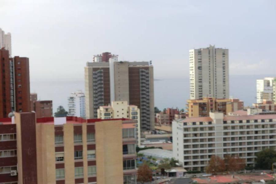 Benidorm,Alicante,España,1 Dormitorio Bedrooms,1 BañoBathrooms,Apartamentos,24712