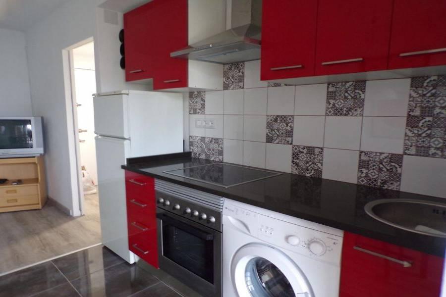 Benidorm,Alicante,España,1 Dormitorio Bedrooms,1 BañoBathrooms,Apartamentos,24718