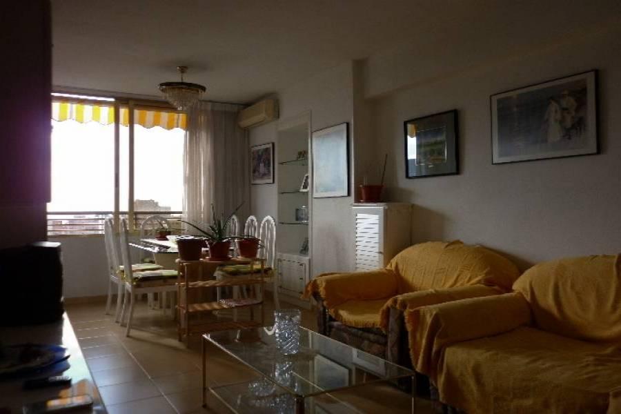 Benidorm,Alicante,España,1 Dormitorio Bedrooms,1 BañoBathrooms,Apartamentos,24721
