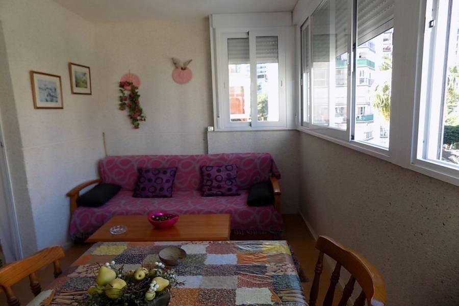 Benidorm,Alicante,España,1 Dormitorio Bedrooms,1 BañoBathrooms,Apartamentos,24724