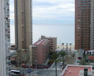 Benidorm,Alicante,España,2 Bedrooms Bedrooms,1 BañoBathrooms,Apartamentos,24726