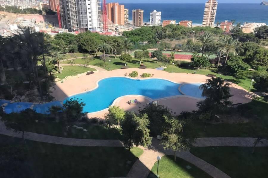Benidorm,Alicante,España,1 Dormitorio Bedrooms,1 BañoBathrooms,Apartamentos,24738