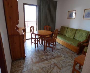 Benidorm,Alicante,España,1 Dormitorio Bedrooms,1 BañoBathrooms,Apartamentos,24743