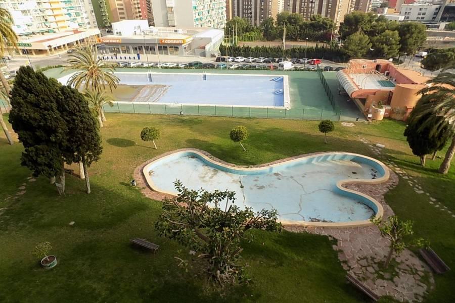 Benidorm,Alicante,España,1 Dormitorio Bedrooms,1 BañoBathrooms,Apartamentos,24755