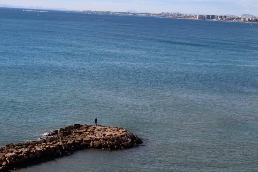 Torrevieja,Alicante,España,3 Bedrooms Bedrooms,2 BathroomsBathrooms,Atico,24764