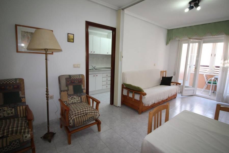 Torrevieja,Alicante,España,1 Dormitorio Bedrooms,1 BañoBathrooms,Apartamentos,24772