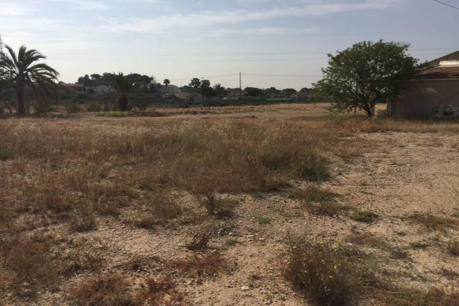 Elche,Alicante,España,Lotes-Terrenos,24780