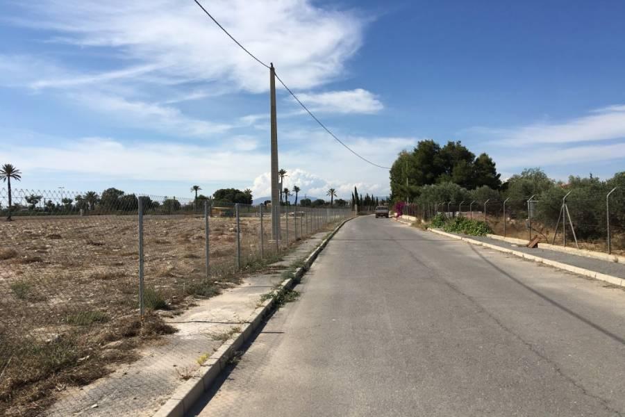 Elche,Alicante,España,Lotes-Terrenos,24799
