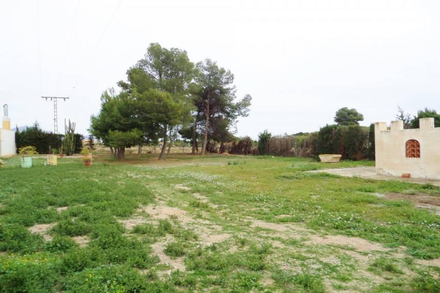 San Vicente del Raspeig,Alicante,España,Lotes-Terrenos,24831