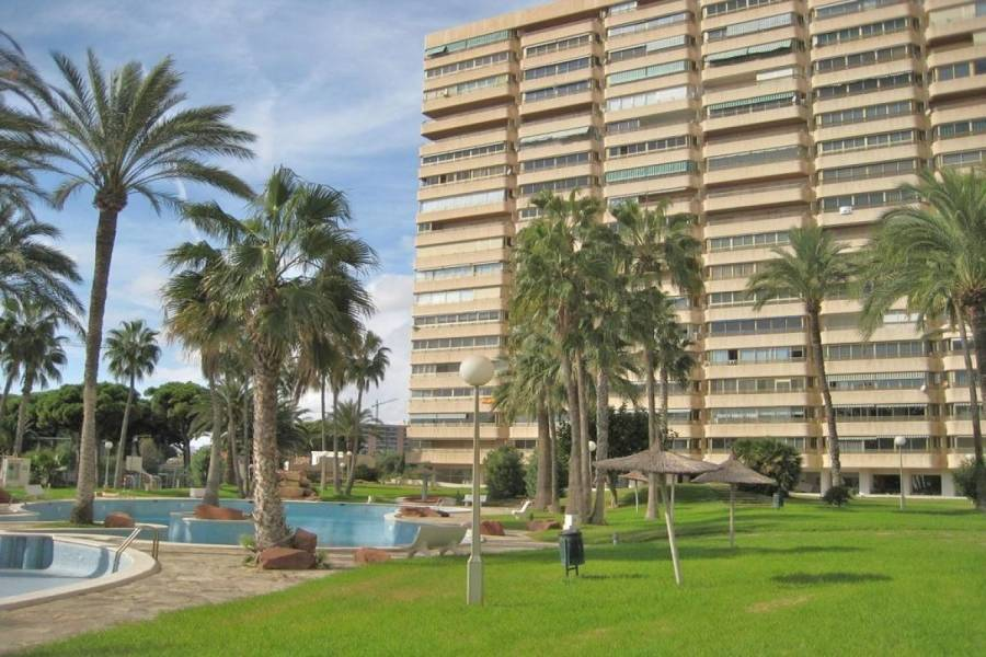 el Campello,Alicante,España,3 Bedrooms Bedrooms,2 BathroomsBathrooms,Apartamentos,24842