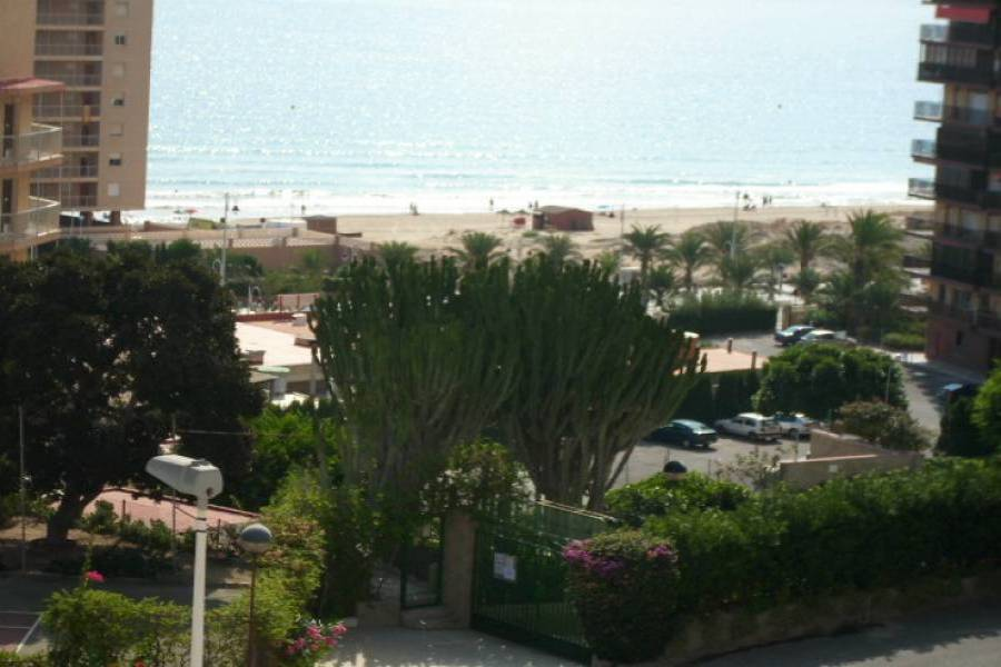 Arenales del sol,Alicante,España,3 Bedrooms Bedrooms,1 BañoBathrooms,Apartamentos,24866