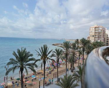 Torrevieja,Alicante,España,3 Bedrooms Bedrooms,2 BathroomsBathrooms,Apartamentos,24885