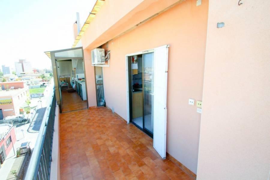 Torrevieja,Alicante,España,2 Bedrooms Bedrooms,1 BañoBathrooms,Atico,24887
