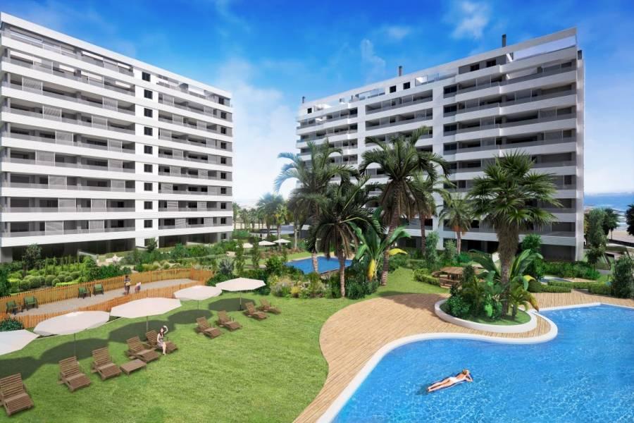 Torrevieja,Alicante,España,2 Bedrooms Bedrooms,2 BathroomsBathrooms,Apartamentos,24896