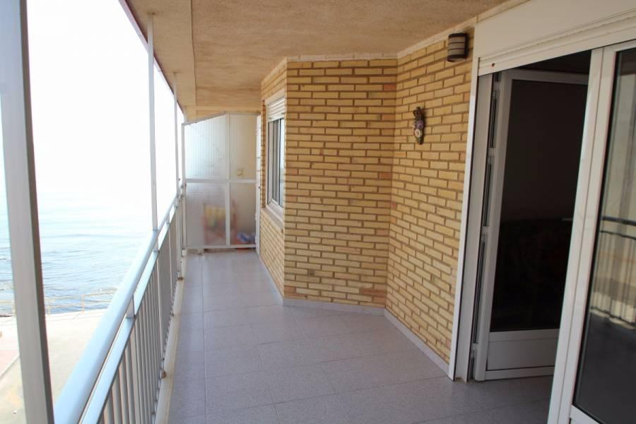 Torrevieja,Alicante,España,3 Bedrooms Bedrooms,1 BañoBathrooms,Apartamentos,24903
