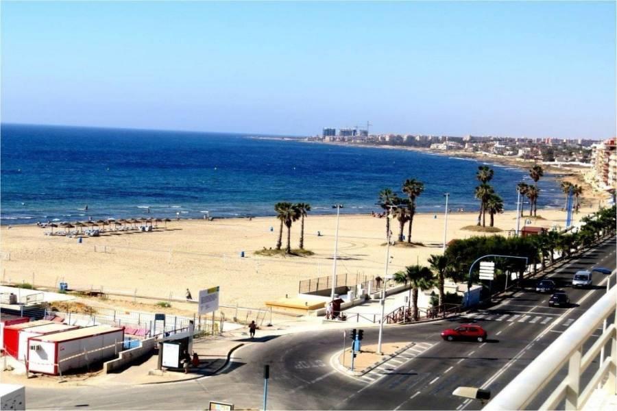 Torrevieja,Alicante,España,3 Bedrooms Bedrooms,1 BañoBathrooms,Apartamentos,24912
