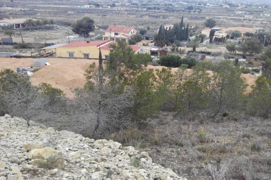 Alicante,Alicante,España,Lotes-Terrenos,25015